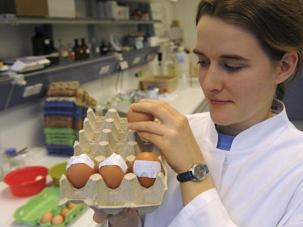 Estudio de los huevos contaminados por dioxina.