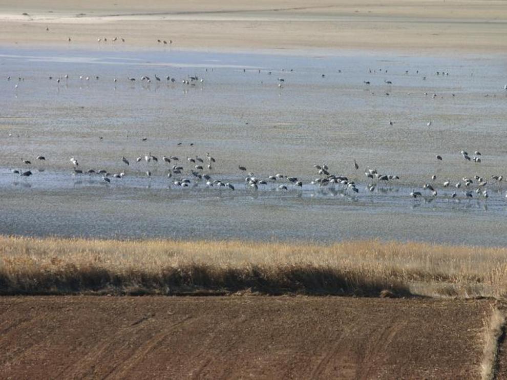 La laguna de Gallocanta