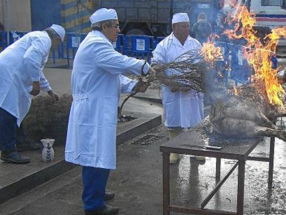 Los matachines quemaron al cerdo, ya sacrificado, con aliagas para quitarle todo el pelaje.