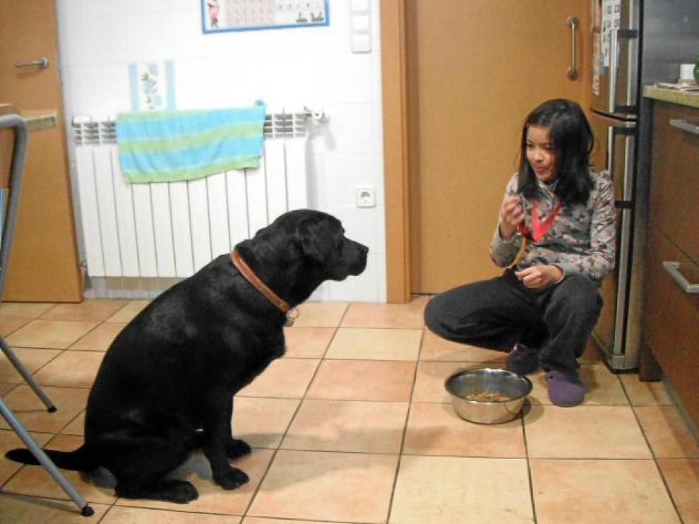 La perra espera sentada a que Irene le indique, con un silbato, que puede empezar a comer.