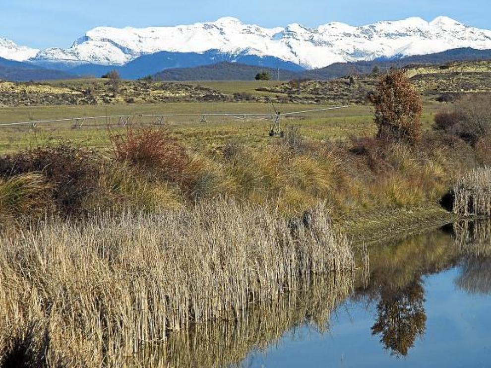 El dueño de la laguna del Castillo de Lerés, se ha interesado en protegerla incluyéndola en 'Humedales Singulares' de la Red Natural de Aragón.