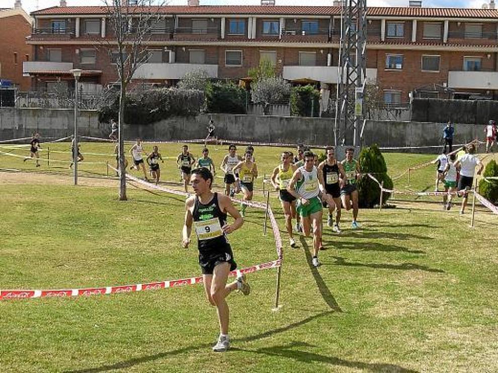 Un momento de la carrera masculina del XII Cross Ciudad de Calatayud disputado ayer.