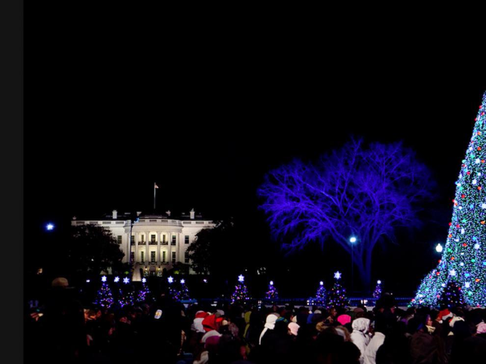 El árbol de la Casa Blanca