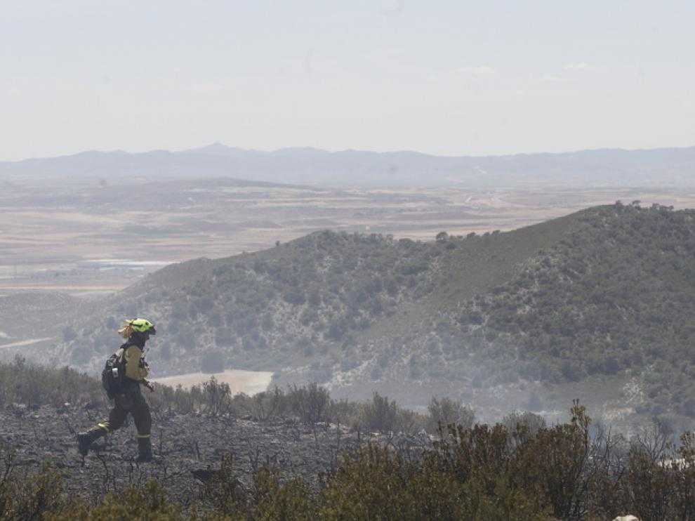 Extinción de un incendio forestal en La Muela el año pasado