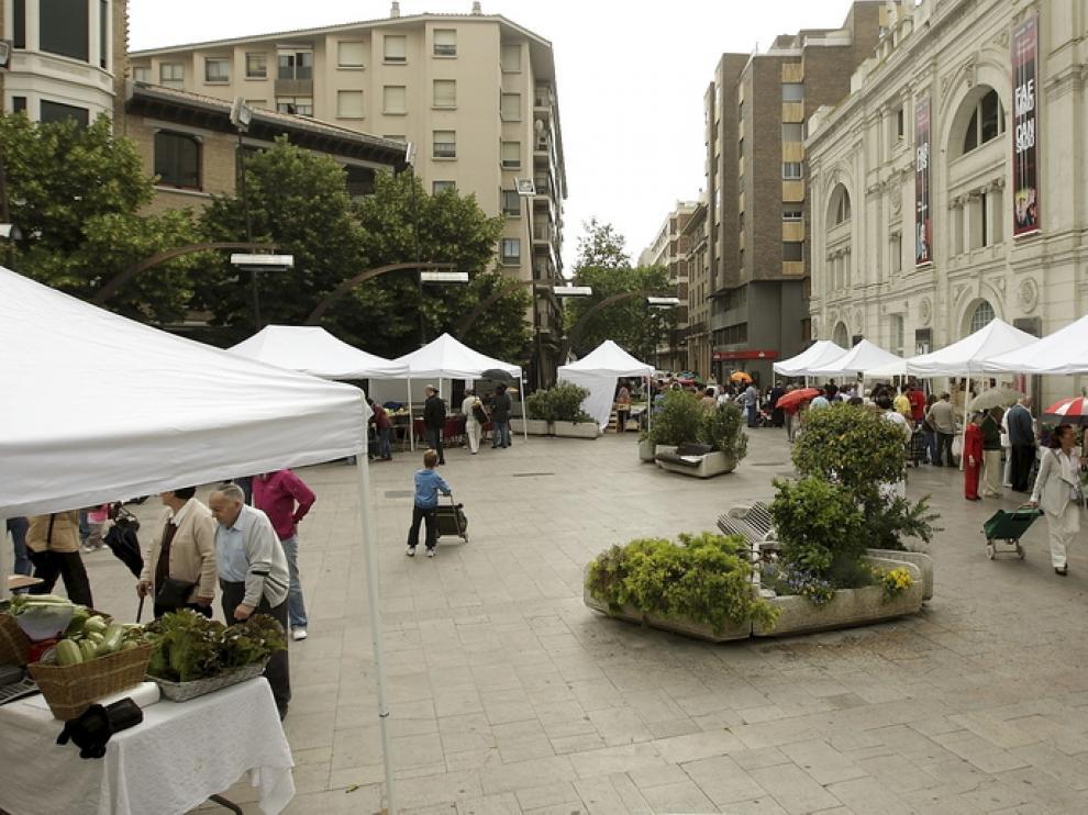 Muestra Agroecológica de la plaza Sinués.