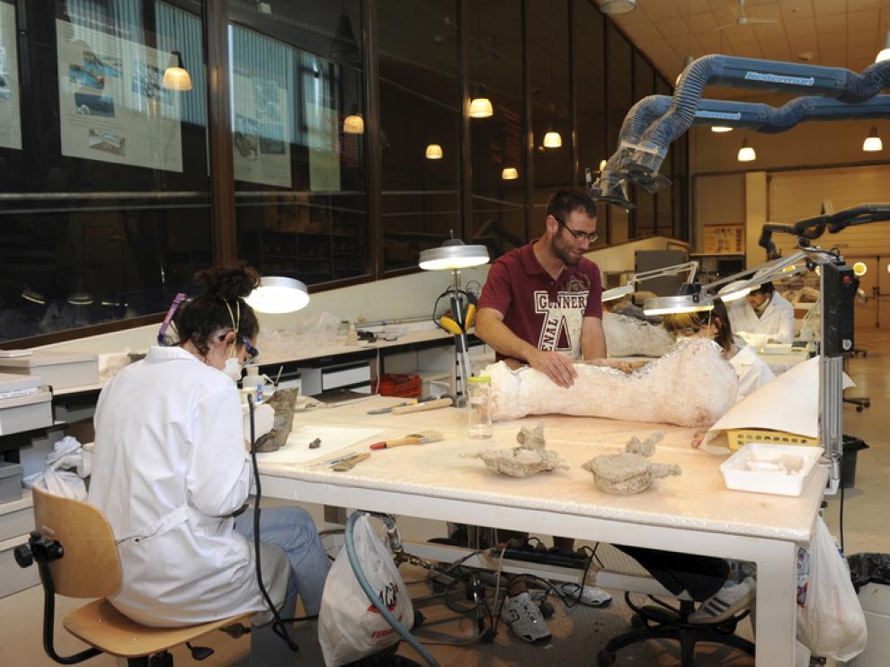 Francisco Gascó con una enorme pieza de dinosaurio, en el laboratorio de Dinópolis.