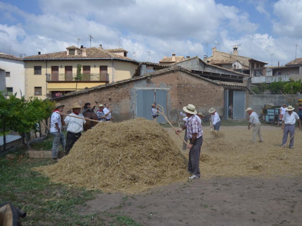 Los hombres realizaron varias actividades agrícolas durante todo el día festivo.