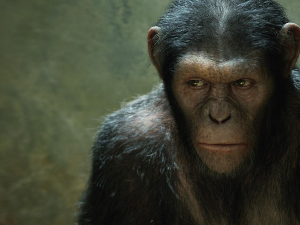 César (Andy Serkis), imagen de archivo.