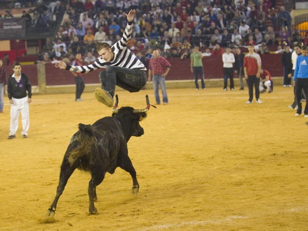 Las vaquillas vuelven al ruedo durante las fiestas del Pilar