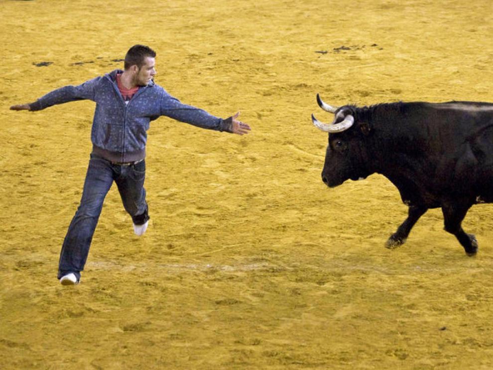 Una imagen del toro 'Ratón'