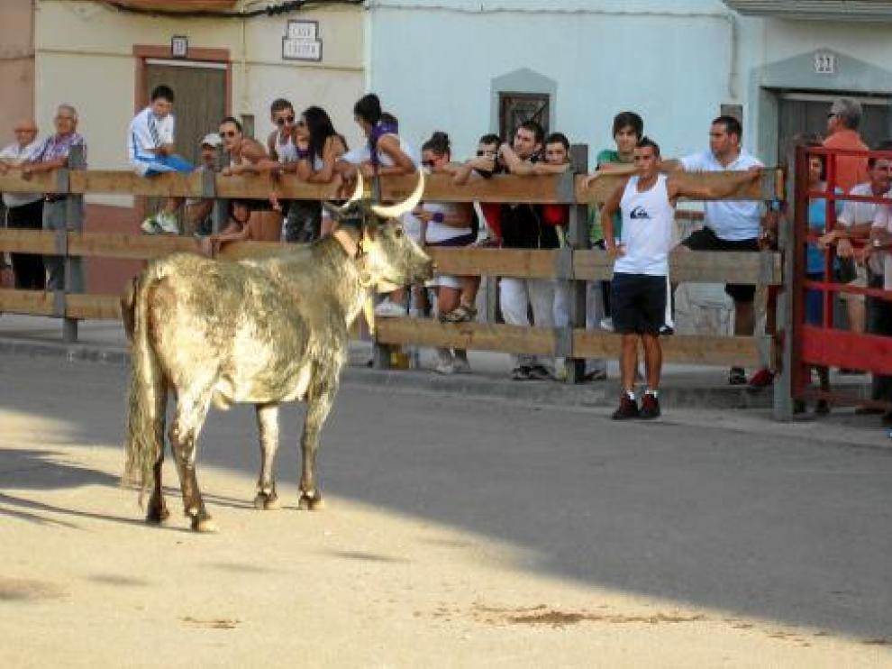Los festejos taurinos son una de las actividades preferidas de los castejoneros.
