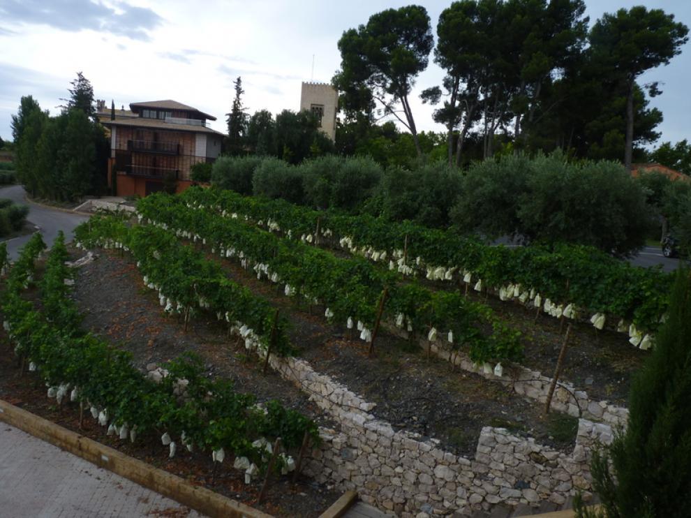 Imagen de La Boella (Tarragona)