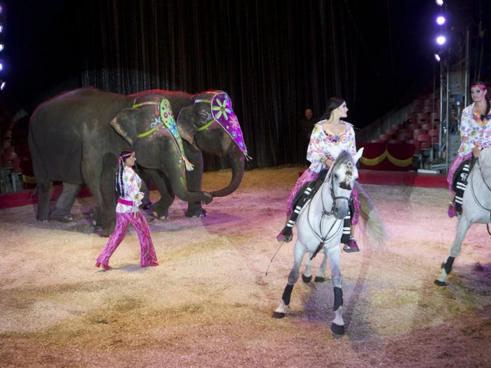 Espectáculo mixto de caballos y elefantes