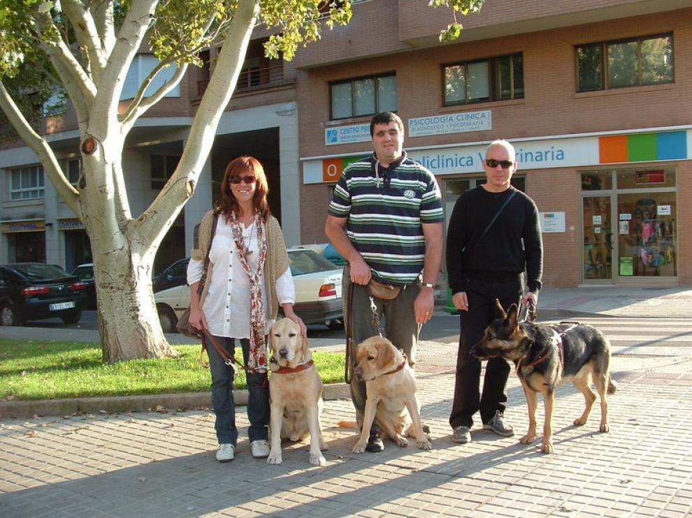De izquierda a derecha, Pilar Torres y su perro 'Hero', Sergio Brau y 'Bánder' y Ricardo Espierre con 'Geíser'