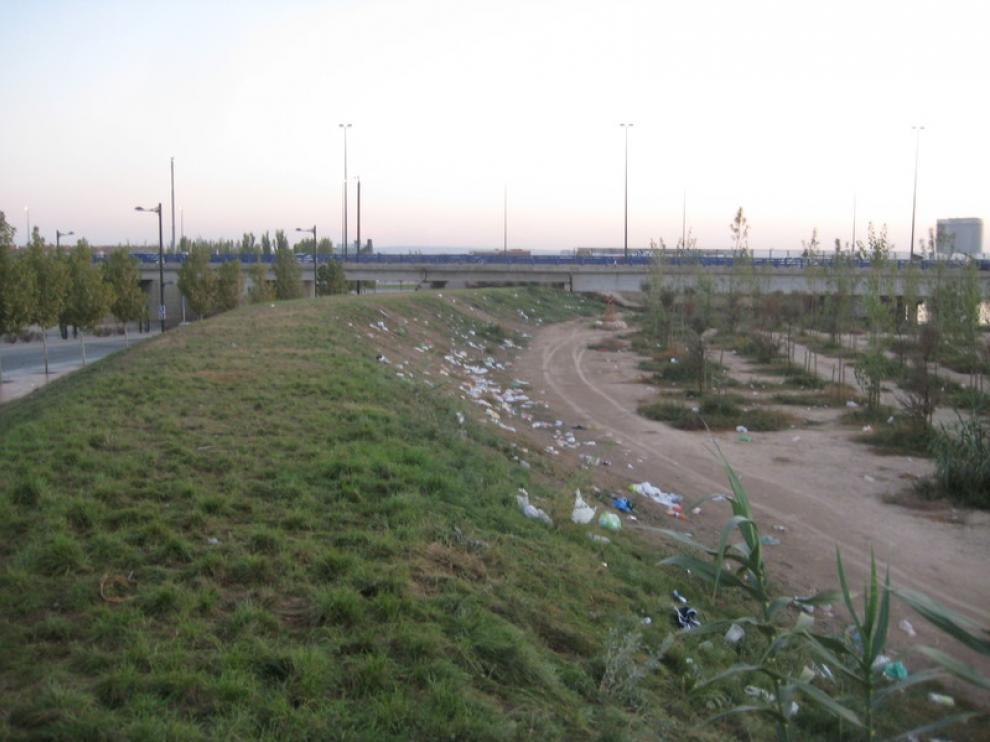 Residuos en la Avenida de Ranillas, frente a Interpeñas