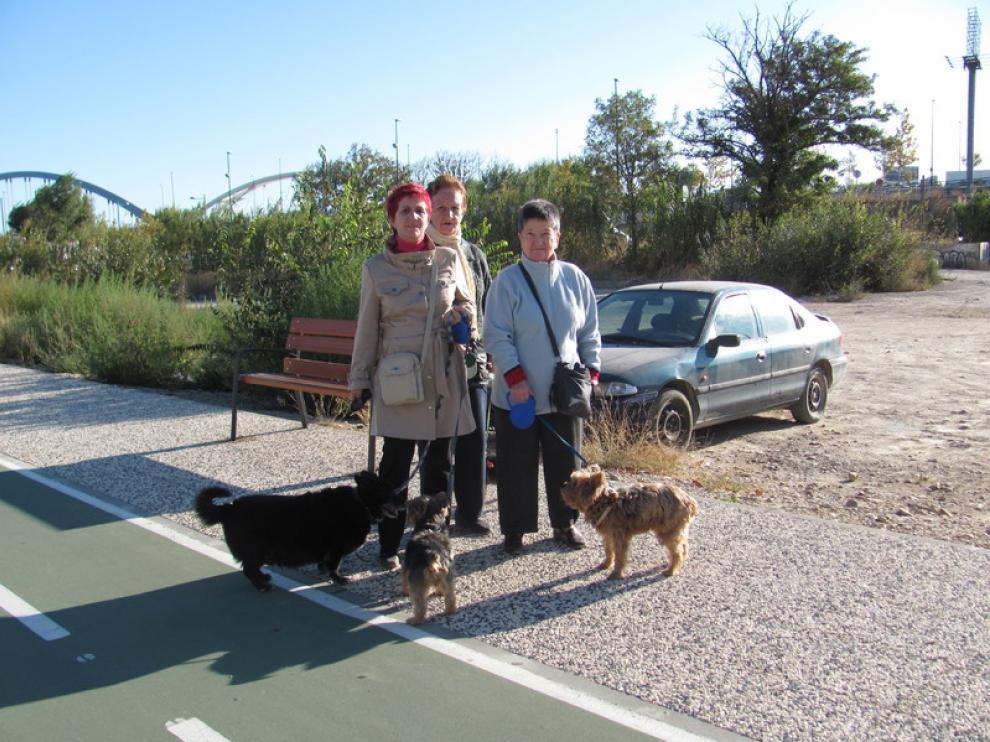 Unas vecinas pasean a sus perros por Las Fuentes