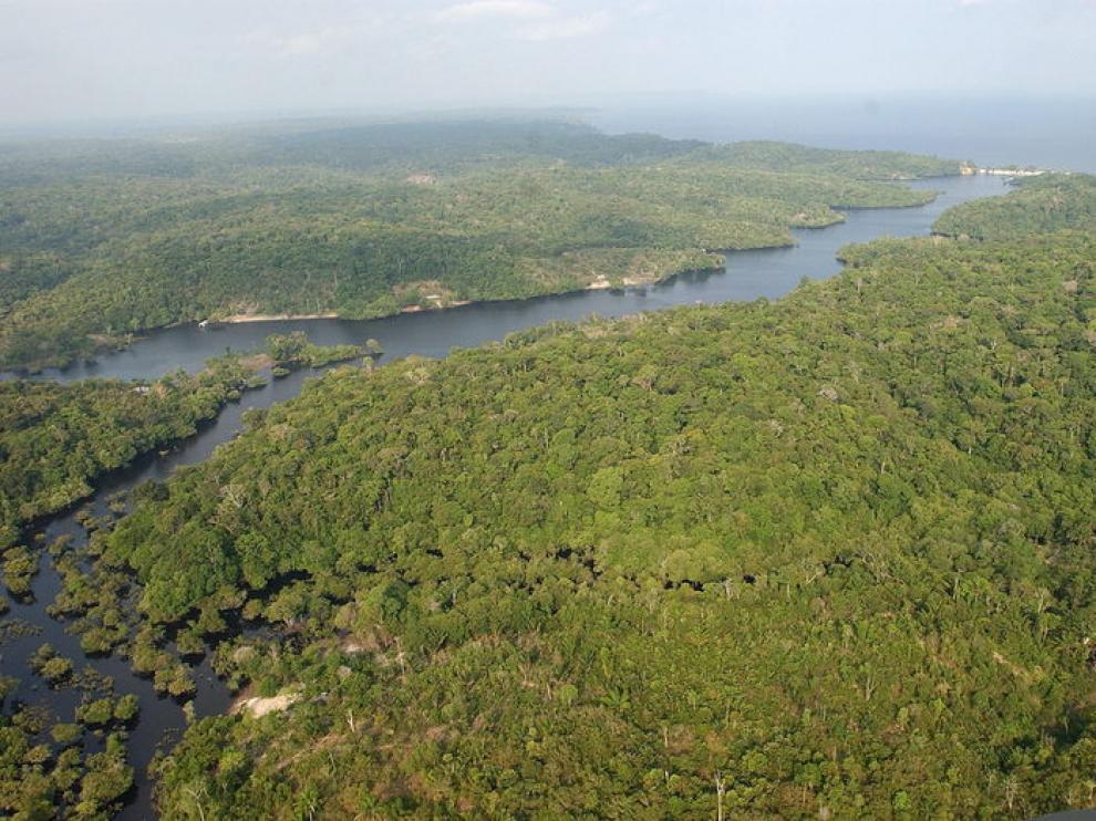 Río Amazonas a su paso por Brasil