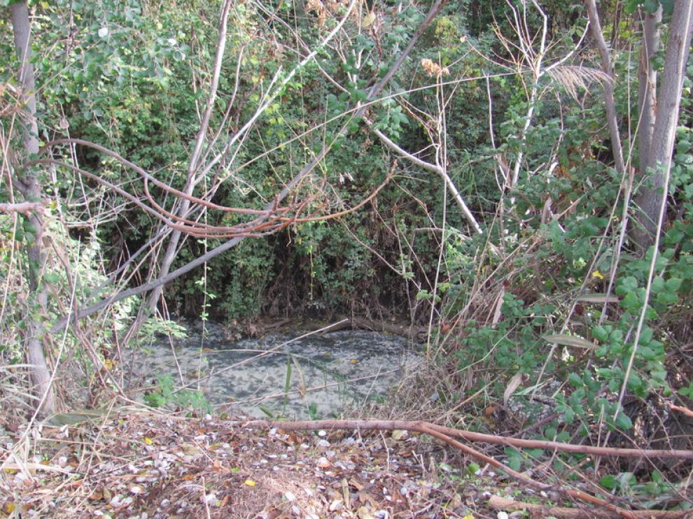 Suciedad y dejadez en las riberas del Huerva a su paso por Santa Fe