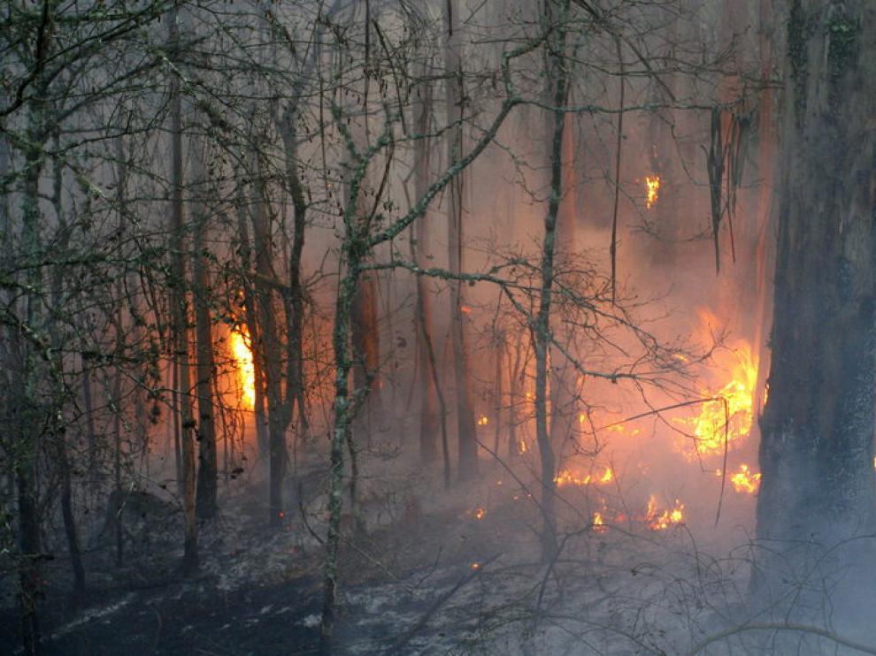Un bombero trata de acabar con el fuego