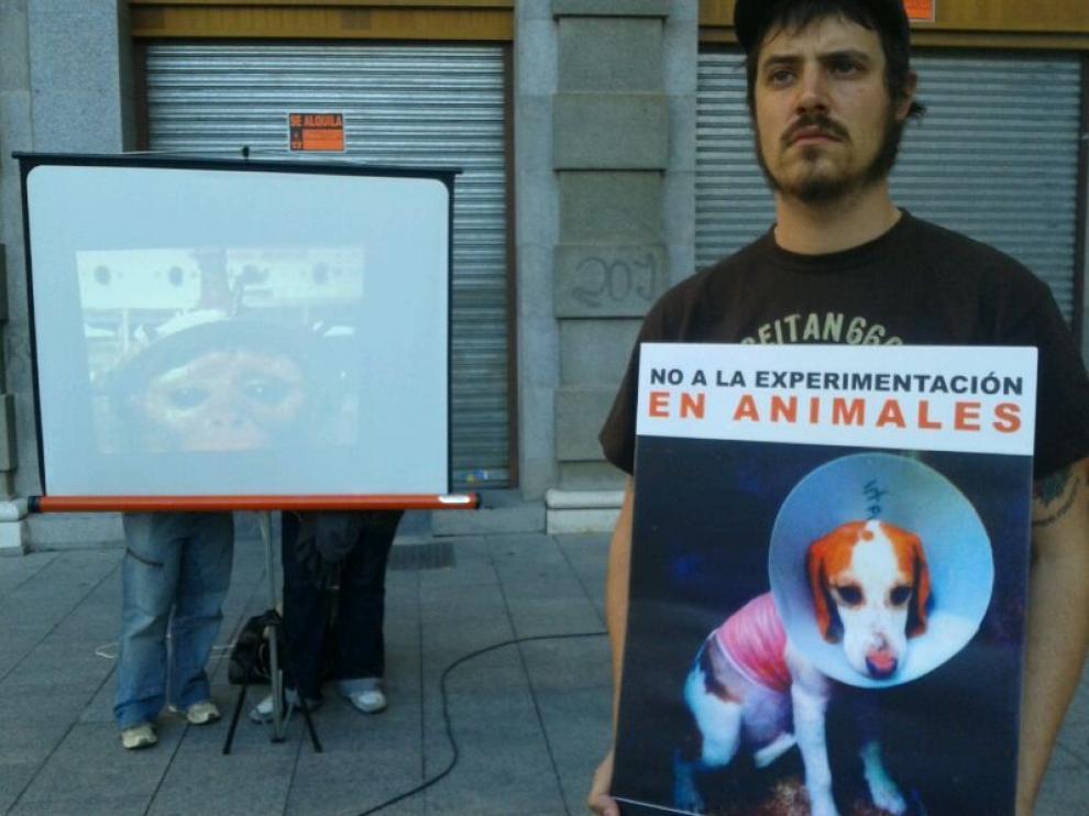 Las proyecciones se han realizado en la plaza de España de Zaragoza