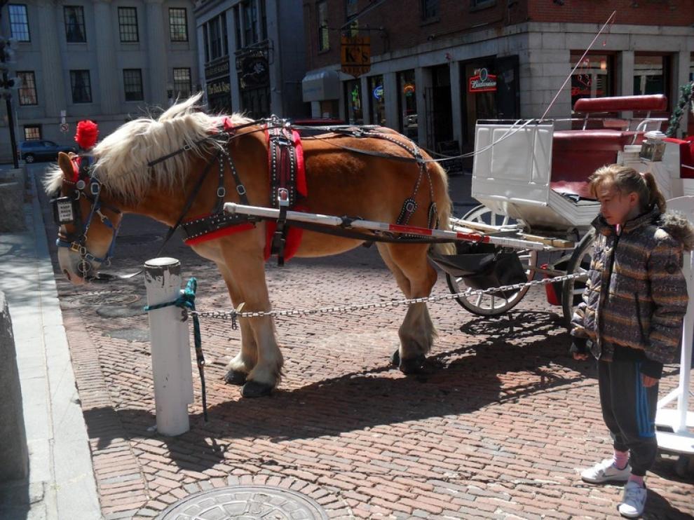 Aitana durante uno de sus paseos por Boston