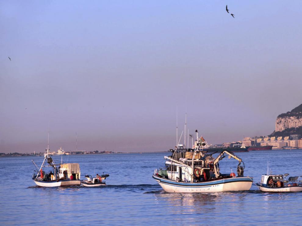 Pesqueros españoles faenando en Gibraltar