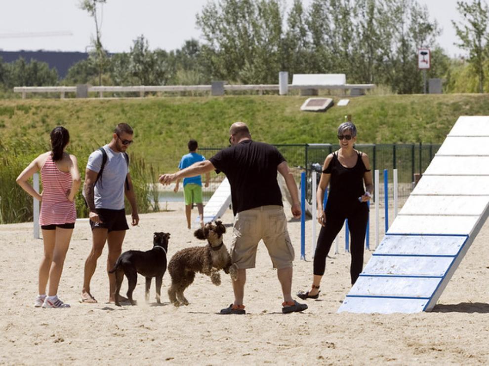 Zona para perros en el Parque del Agua