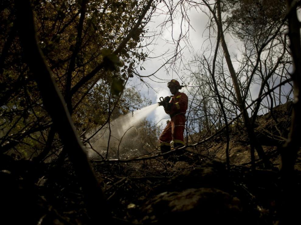 Un bombero trabaja para extinguir el fuego en Ojén.