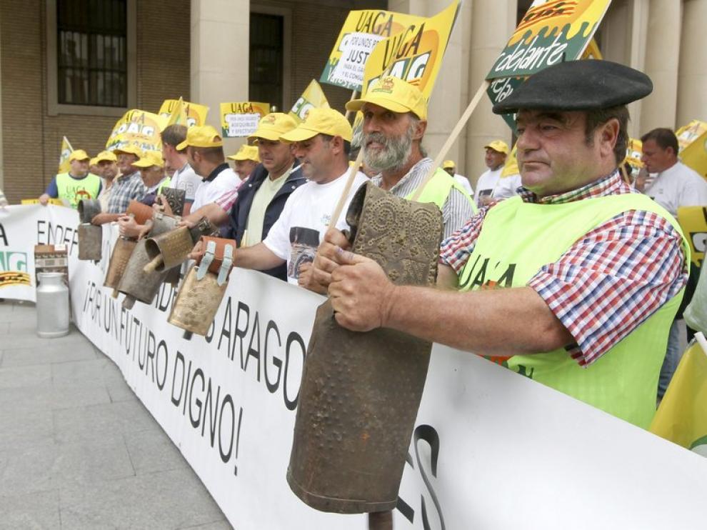 Unos 200 ganaderos se han concentrado este viernes en Zaragoza
