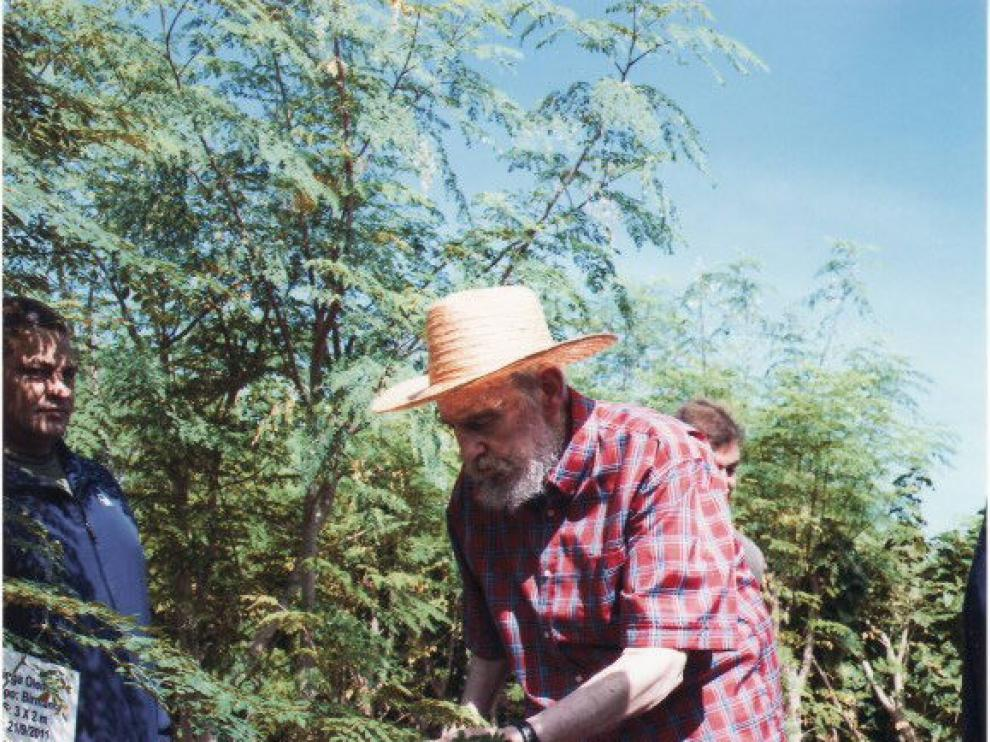 El expresidente de Cuba caminando entre un cultivo.