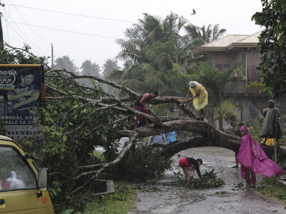 Un grupo de personas intenta cortar las ramas de un arbol caído por el temporal.