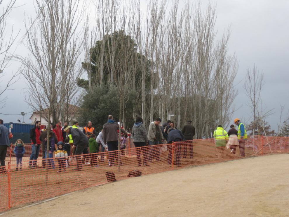 Plantación de árboles en el Parque Oliver