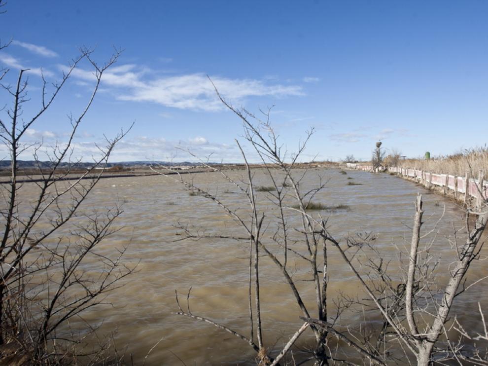 Imagenes de la ultima crecida del Ebro