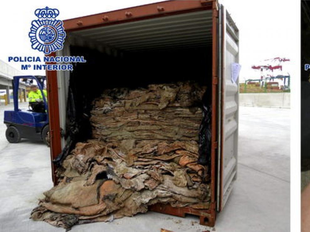 La droga estaba ocultos en pieles de bovino camufladas en el interior de un contenedor