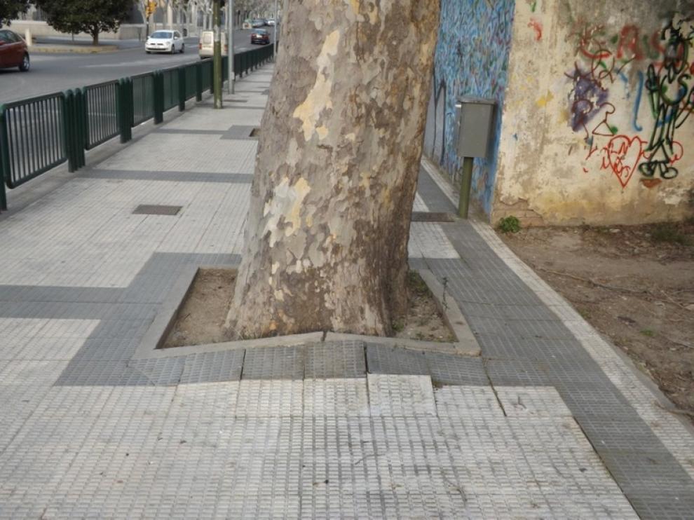 Aceras de la avenida de Martínez Velasco