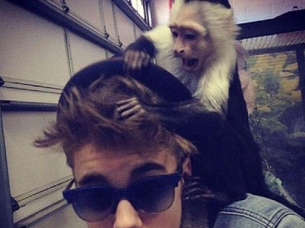 Justin Bieber y su mono capuchino