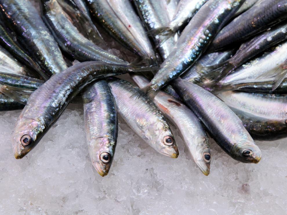El agua de mar pura ayuda la conservación y lavado del pescado
