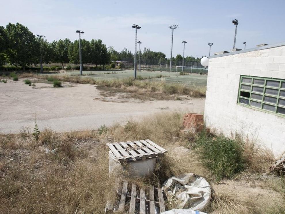 Hierbas en el entorno abandonado del Parque Deportivo Ebro