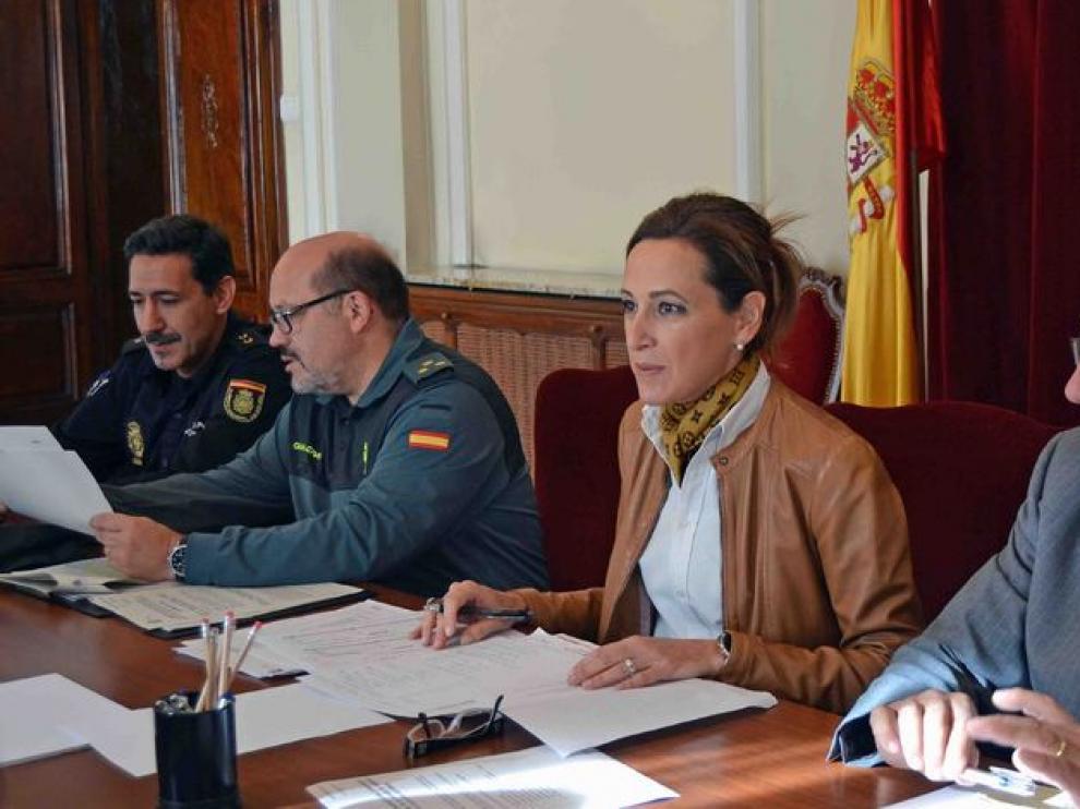 La subdelegada del Gobierno en Huesca, María Teresa Lacruz, en la presentación del plan