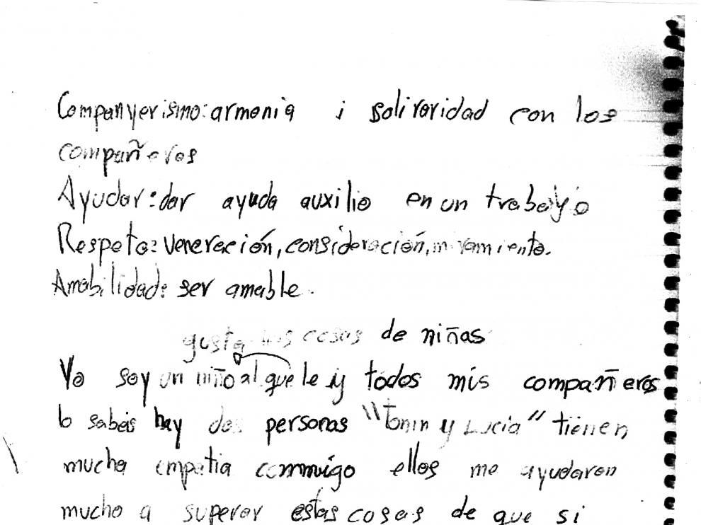 Carta escrita por una niña transexual