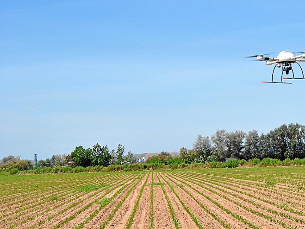 Control de hierbas desde un avión