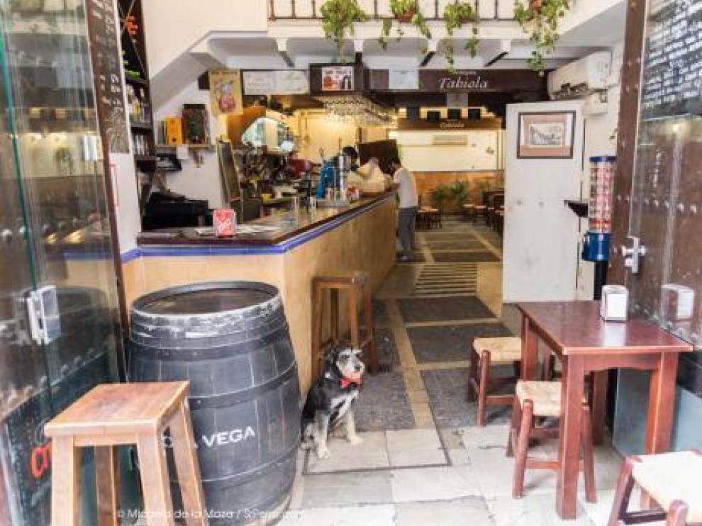 Un bar de Sevilla que permite la entrada de perros