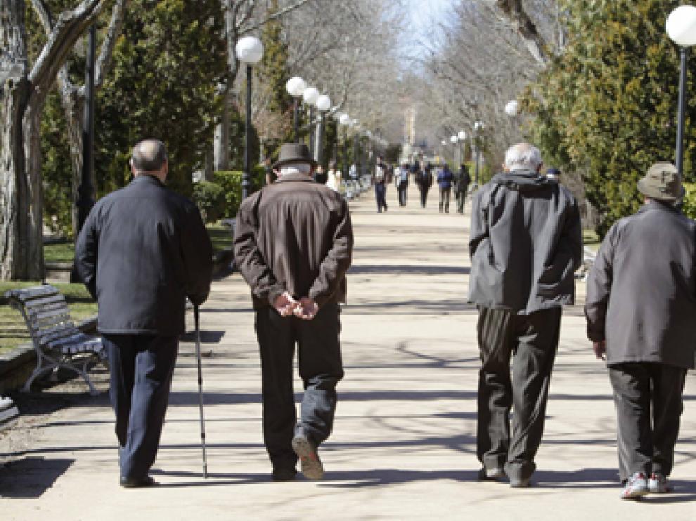 Un grupo de jubilados pasea por el parque de la Dehesa