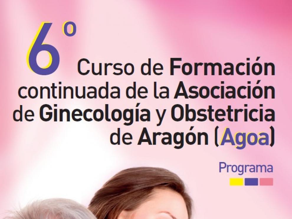 Unos 250 profesionales se reúnen en este curso de formación continuada en Zaragoza
