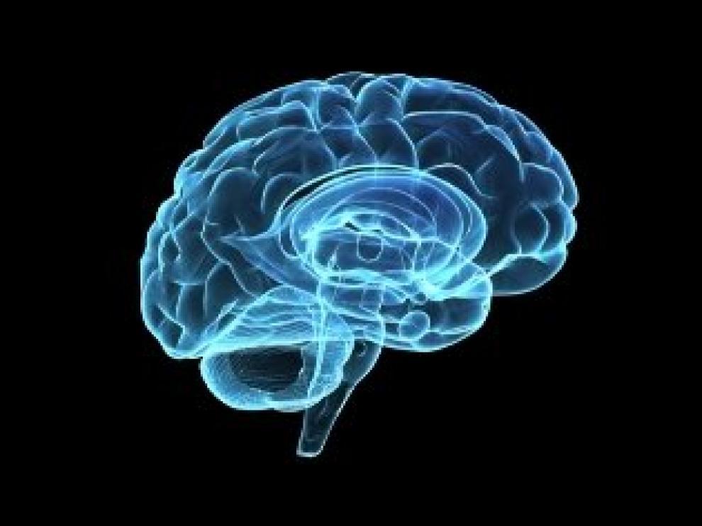 Los 200 milisegundos son el tiempo óptimo en que se transmiten los datos a través de las diferentes áreas cerebrales.