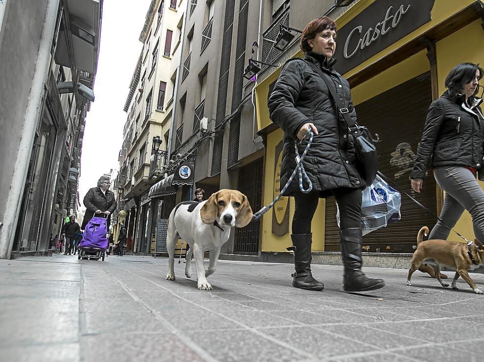 El Casto Café no permitirá entrar a los perros hasta que Ayuntamiento y DGA lleguen a un acuerdo.