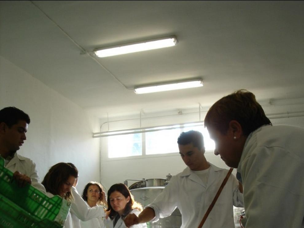 Entrada de la uva en el laboratorio del IES Joaquín Costa