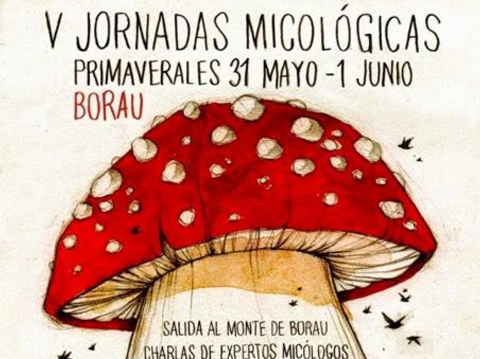 Cartel de las Jornadas Micológicas Primaverales de Borau