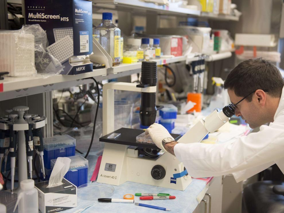 Científico investigando sobre el cáncer de cérvix.