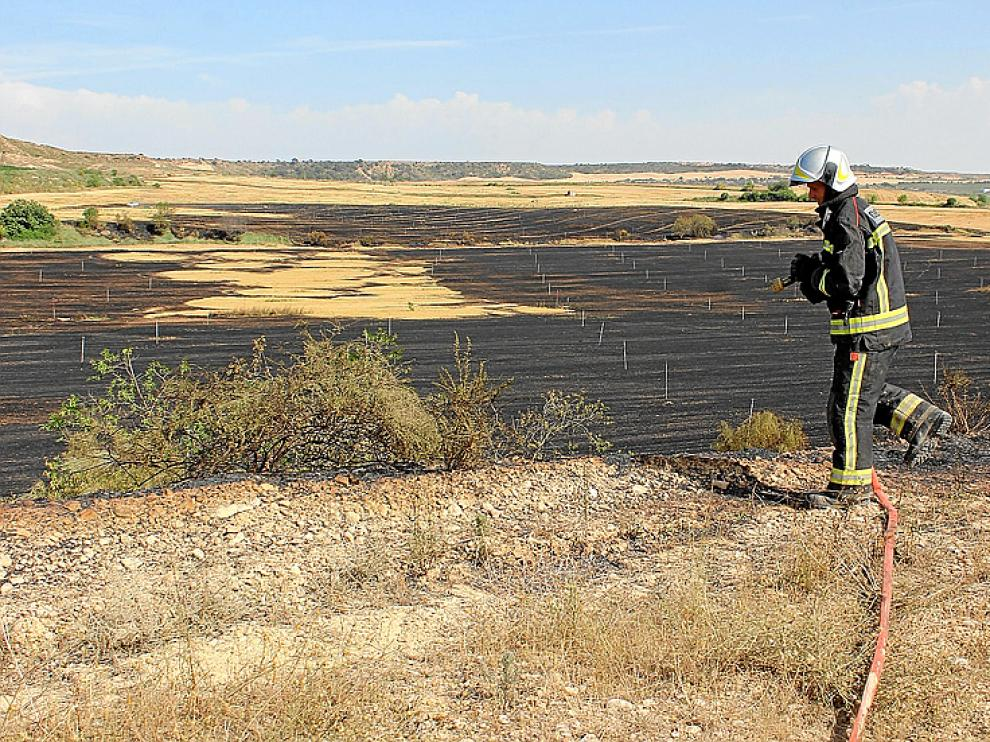 Un bombero refresca los campos ya quemados.